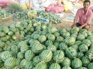 Trung Quốc là thị trường nhập khẩu nông sản lớn nhất của Việt Nam