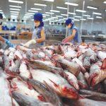 Trung Đông, châu Phi: Hai thị trường tiềm năng nhưng đầy thách thức với doanh nghiệp Việt
