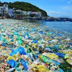 Năm 2021: Chợ, siêu thị không sử dụng đồ nhựa dùng 1 lần
