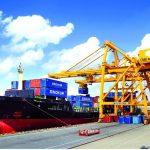 Bất chấp dịch Covid-19, kim ngạch thương mại Việt Nam với châu Mỹ vẫn tăng cao