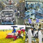 Kinh tế Việt Nam phục hồi với nhiều dấu hiệu khởi sắc